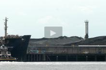 coal_action