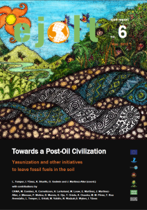 towards a post-oil civilisation
