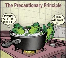 Pic innovation vs precaution